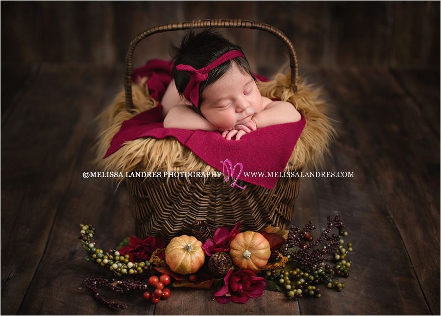 Fall photos baby photo shoot la quinta photographer melissa landres