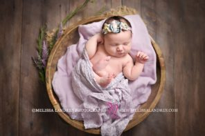 professional baby photography Melissa Landres