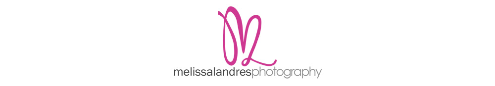 Newborn baby and Maternity photographer, La Quinta, Indio, Palm Desert, Indian Wells, Palm Springs, Rancho Mirage, Cathedral City | Melissa Landres Photography logo